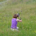 Sommerakademie Würzburg, Fotokurse, Fotoworkshops, Malreisen, Malkurse, grün, Landschaft, fotografieren